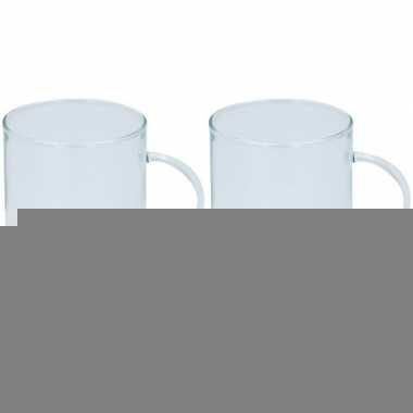 12x glazen voor thee 400 ml prijs