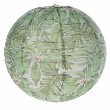 1x ronde lampionnen met planten opdruk prijs