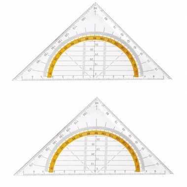 2x geo driehoeken 14 cm prijs