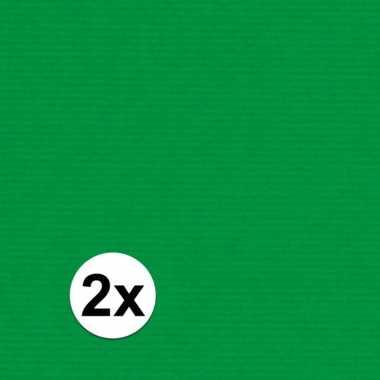 2x kaftpapier groen 70 x 200 cm kraftpapier prijs
