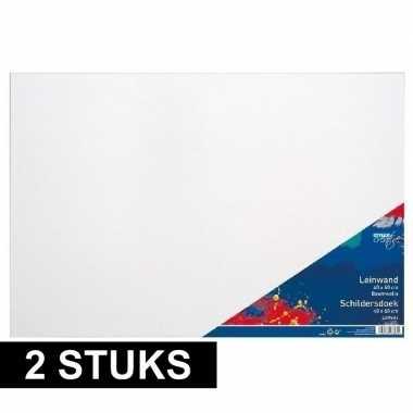 2x luxe canvas doeken om te schilderen 40 x 60 cm prijs
