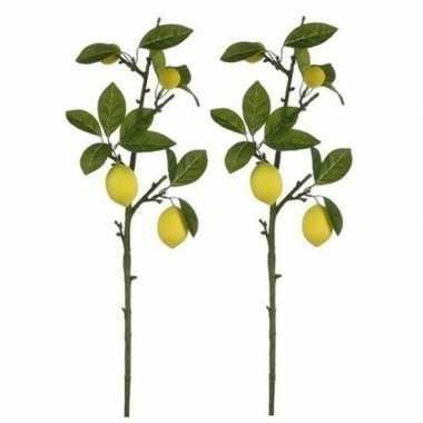 2x nep planten citrus limonia citroenboom kunstbloemen takken 65 cm d