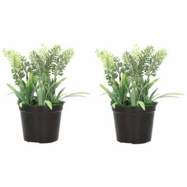 2x nep planten groene lavandula lavendel kunstplanten 16 cm met zwart