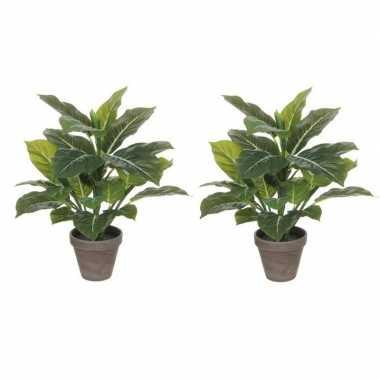 2x planten groene philodendron kunstplanten 49 cm met grijze pot prij