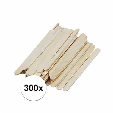 300x ijslolly stokjes 5,5 x 2 cm prijs