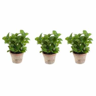 3x groene kunstplant basilicum kruiden plant in pot prijs