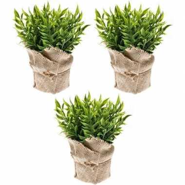 3x groene kunstplanten muizendoorn kruiden plant in pot prijs