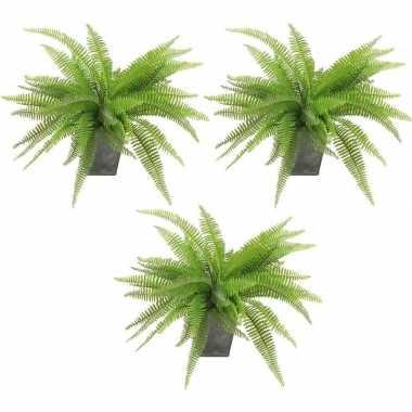 3x groene varen kunstplant 33 cm in zinken pot prijs