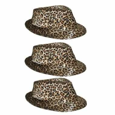 3x hoedje met luipaard print prijs