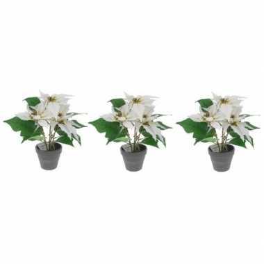 3x kunstplanten witte poinsettia bloem met pot 30 cm prijs
