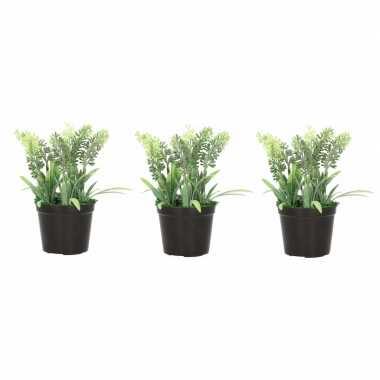 3x nep planten groene lavandula lavendel kunstplanten 16 cm met zwart
