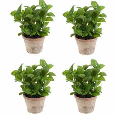 4x groene kunstplant basilicum kruiden plant in pot prijs