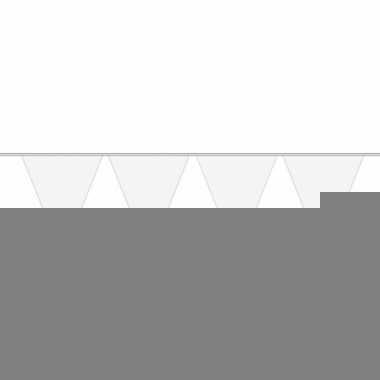 5x carnaval vlaggenlijn wit 10 meter prijs
