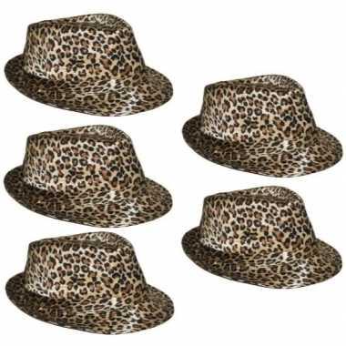 5x hoedje met luipaard print prijs