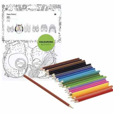 6x maskers om in te kleuren met potloden voor kinderen prijs