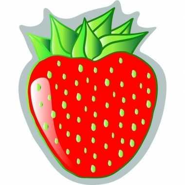 Badlaken aardbei strawberry voor volwassenen 120 x 150 prijs