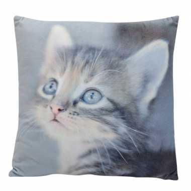 Decoratie kussens cyperse kitten/poes/kat 34 x 34 cm prijs