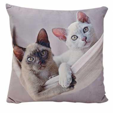 Decoratie kussens siamese kitten/poes/kats 34 x 34 cm prijs