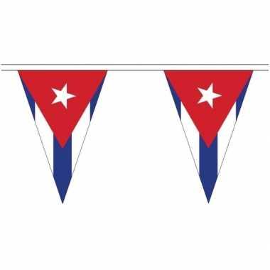 Extra lange cuba vlaggenlijnen van 20 meter prijs