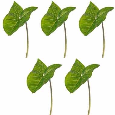 Groene aronskelkblad tak 53 cm prijs