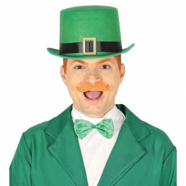 Groene dwergen vilten hoed voor volwassenen prijs