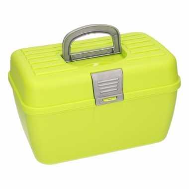Groene opbergbox 28 cm prijs