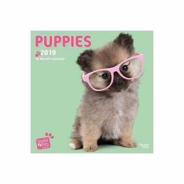 Honden puppies kalender 2019 prijs