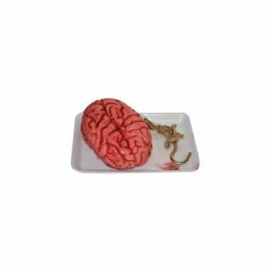 Horror decoratie hersenen in bakje prijs