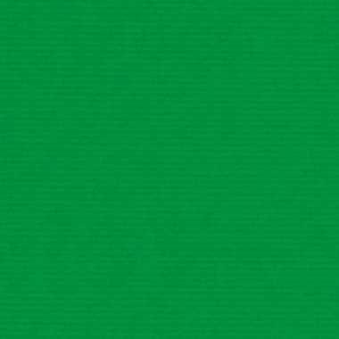 Kaftpapier groen 70 x 200 cm kraftpapier prijs