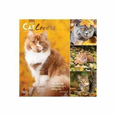 Katten/poezen kalender cat lovers 2019 prijs