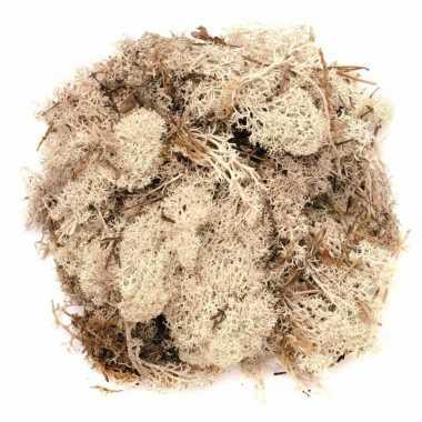 Kerststukje/herfststukje mos naturel 50 gram prijs