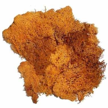 Kerststukje/herfststukje mos oranje 50 gram prijs