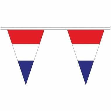 Lange nederland vlaggenlijnen van 5 meter prijs