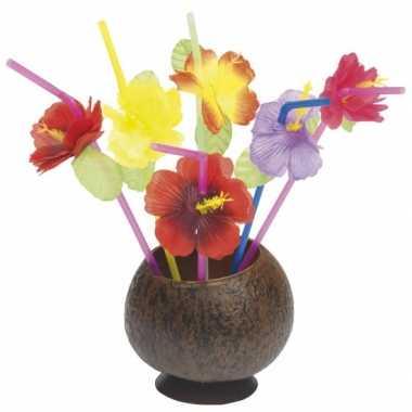 Rietjes met gekleurde bloemen 48 stuks prijs