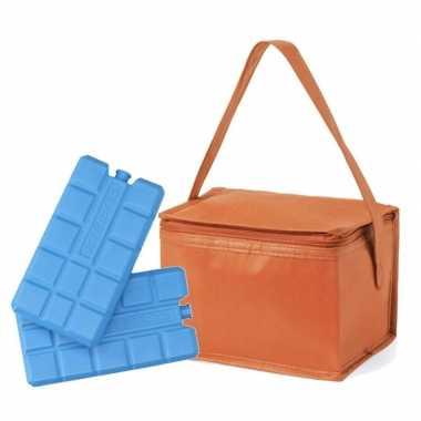 Strand sixpack mini koeltasje oranje inclusief 2 koelelementen prijs