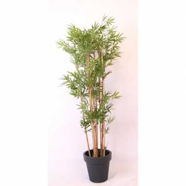 Tropische bamboe boom in antraciete pot 190 cm prijs