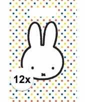 Vergelijk 12x nijntje versiering eten uitdeelzakjes snoepzakjes 30 x 21 cm kinderverjaardag prijs