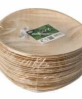 Vergelijk 25x palmblad borden 25 cm prijs