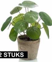 Vergelijk 2x groene kunstplanten pilea plant in pot 25 cm prijs