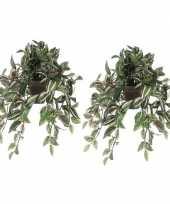 Vergelijk 2x nep planten groene tradescantia vaderplant kunstplanten 45 cm met hangpot prijs 1016011