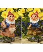 Vergelijk 2x tuin beeldjes bewegende tuinkabouters op eekhoorn schildpad 21cm prijs