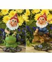 Vergelijk 2x tuin beeldjes bewegende tuinkabouters op kikker schildpad 21cm prijs