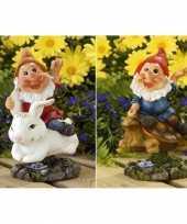 Vergelijk 2x tuin beeldjes bewegende tuinkabouters op konijn schildpad 21cm prijs