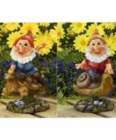 Vergelijk 2x tuin beeldjes bewegende tuinkabouters op schildpad slak 21cm prijs
