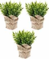 Vergelijk 3x groene kunstplanten muizendoorn kruiden plant in pot prijs