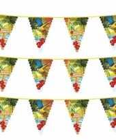 Vergelijk 3x hawaii thema vlaggenlijn met grote vlaggetjes prijs