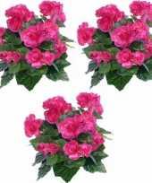 Vergelijk 3x kunstplanten begonia roze 30 cm prijs