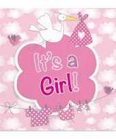 Vergelijk 40x babyshower servetten roze 25 x 25 cm geboortefeestje prijs