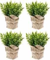 Vergelijk 4x groene kunstplanten muizendoorn kruiden planten in pot prijs