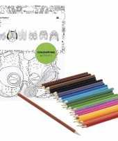 Vergelijk 6x maskers om in te kleuren met potloden voor kinderen prijs